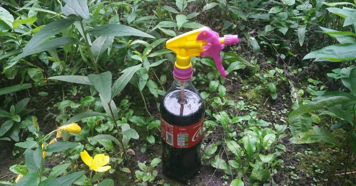 Gardening Hacks With Coca-Cola